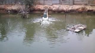 Aerador Oxigenador Caseiro para Tanque de Peixes 02