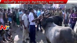 Download Hindi Video Songs - Public Protest for Jallikattu Permission in Tamilnadu || NTV