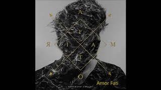 Bertrand Cantat  - Amor Fati (2017)