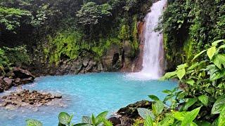 Tamarindo, Costa Rica Family Trip 2019