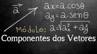 Nesta aula: Aprenda a calcular as componentes de um vetor em relaçã...