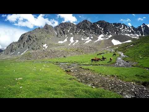 Keldike valley on the way to AlaKul lake in Kyrgyzstan. Wild Horses by the river
