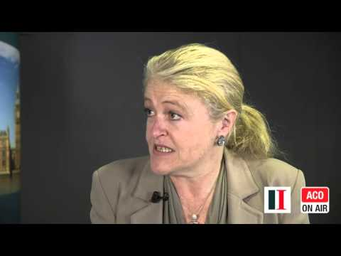 EIC Conference - Interview with Laura Sandys, European Movement UK