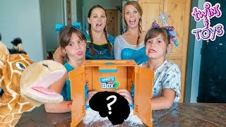 Sister vs Sister! What's in the Box Challenge with Anna & Elsa and Kate & Lilly