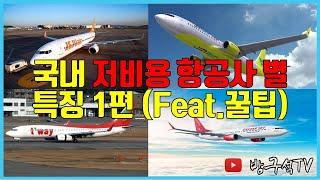 국내 저비용 항공사별 특징 1편 (feat.꿀팁) [해…