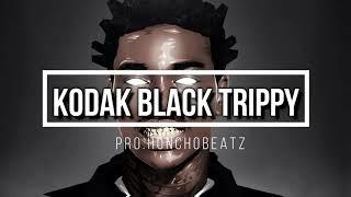 Kodak Black instrumental 2018 TRIPPY Pro Honchobeatz