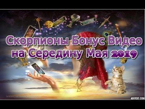 Скорпионы Бонус Таро Расклад на середину Мая 2019 ~ Случайно записала 2 Видео для Скорпионов!