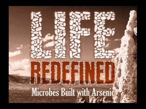 Public Lecture—Life Redefined: Microbes Built with Arsenic
