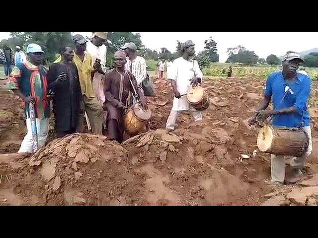 Gwandara Farming Culture 3