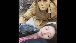 【Hot】 Tiktok Trung Quốc- Những pha troll hài hước!