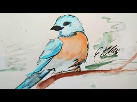 Vogel zeichnen watercolor brush