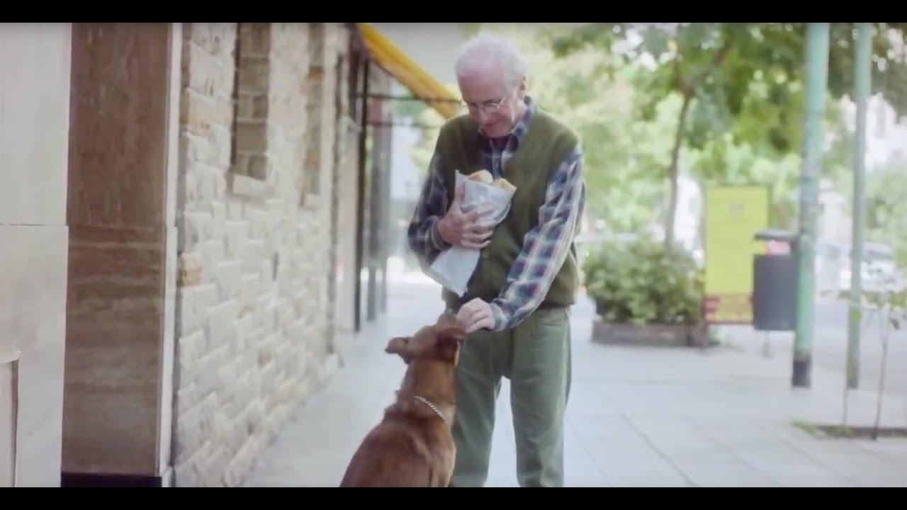 cherche homme avec chien)
