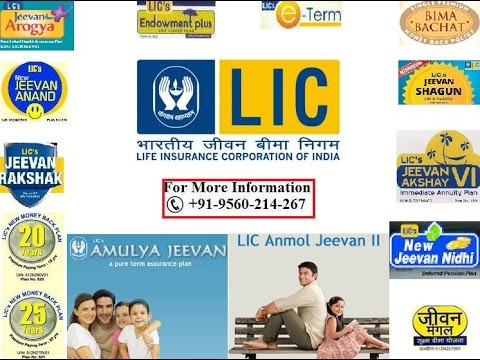 Life Insurance Premium Calculator for LIC and SBI Policy Holders