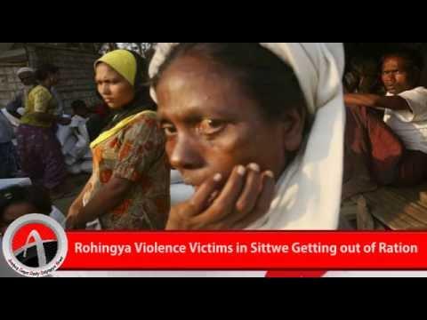 Rohingya Daily News 17 August 2016