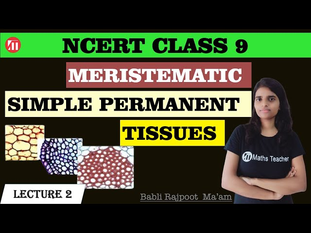 Meristematic Tissue Type | Class 9 Biology | NCERT Science | Permanent Tissues and it's Types