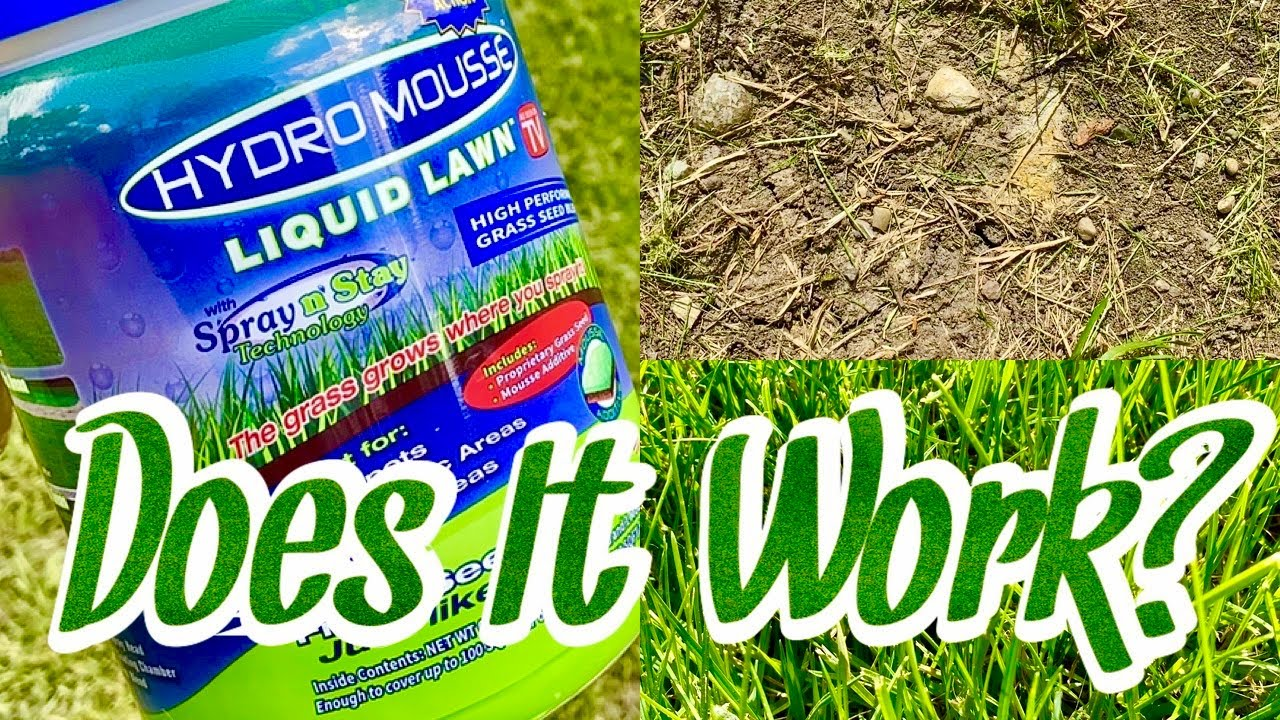Does Hydro Mousse Liquid Lawn Grass Spray Work Youtube