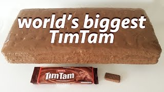 GIANT TIM TAM RECIPE by Ann Reardon How To Cook That ft Jessica Watson