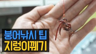How to hook worms   Fishing with live worms