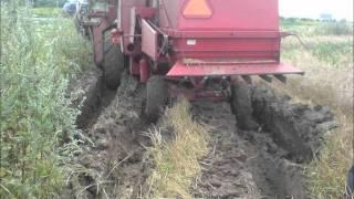wypadki i wtopy bizona
