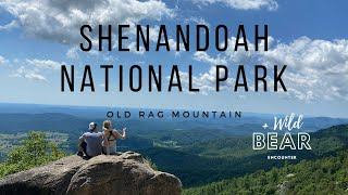 Shenandoah National Park | Old Rag Mountain | Full hike and BEAR ENCOUNTER!!!