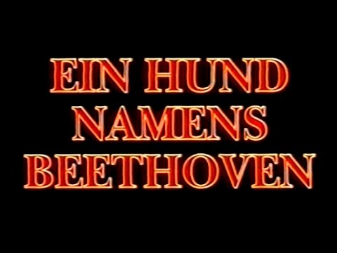 Ein Hund Namens Beethoven 2