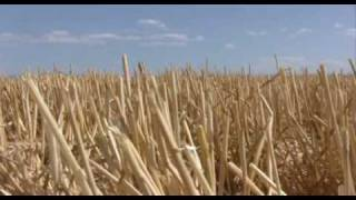 Montana Wheat Farmer: America