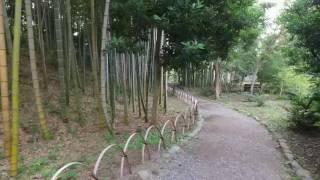 吉田邸は7年前に火事で焼失しましたが、現在は再建中。数年前より庭園...