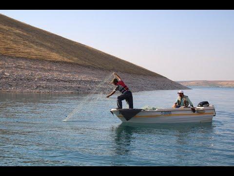 Şanlıurfa'da balıkçılığın yaygınlaştırılmasına tam destek