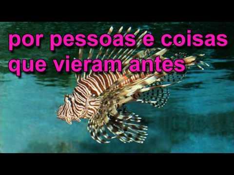 In My Life = LEGENDADO PORTUGUÊS
