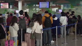 Chinese travel agencies suspend all domestic group tours