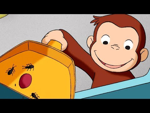 Curious George 🐵 Feeling Antsy 🐵Full Episode🐵 HD 🐵 Cartoons For Children
