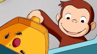 Curious George 🐵 Feeling Antsy 🐵Full Episode🐵 HD 🐵 Cartoons For Children thumbnail