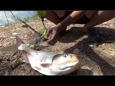 Đi câu cá mè – ngày chủ nhật may mắn