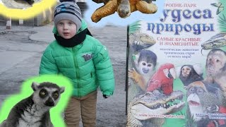 """Поход Макса на выставку экзотических животных """"Чудеса природы"""". Exotic animals """"Wonders of Nature"""""""