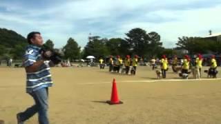 2012年10月8日に城山公園で行われた犬祭での K9今治のデモチーム...