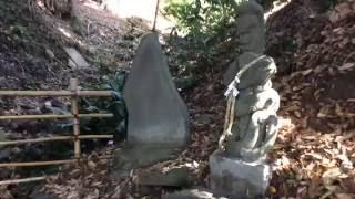 白瀧神社---東京都あきる野市