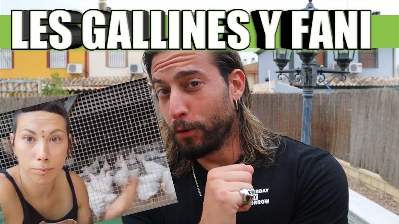 FANI VEGANA Y SU OFICIO Y LES GALLINES