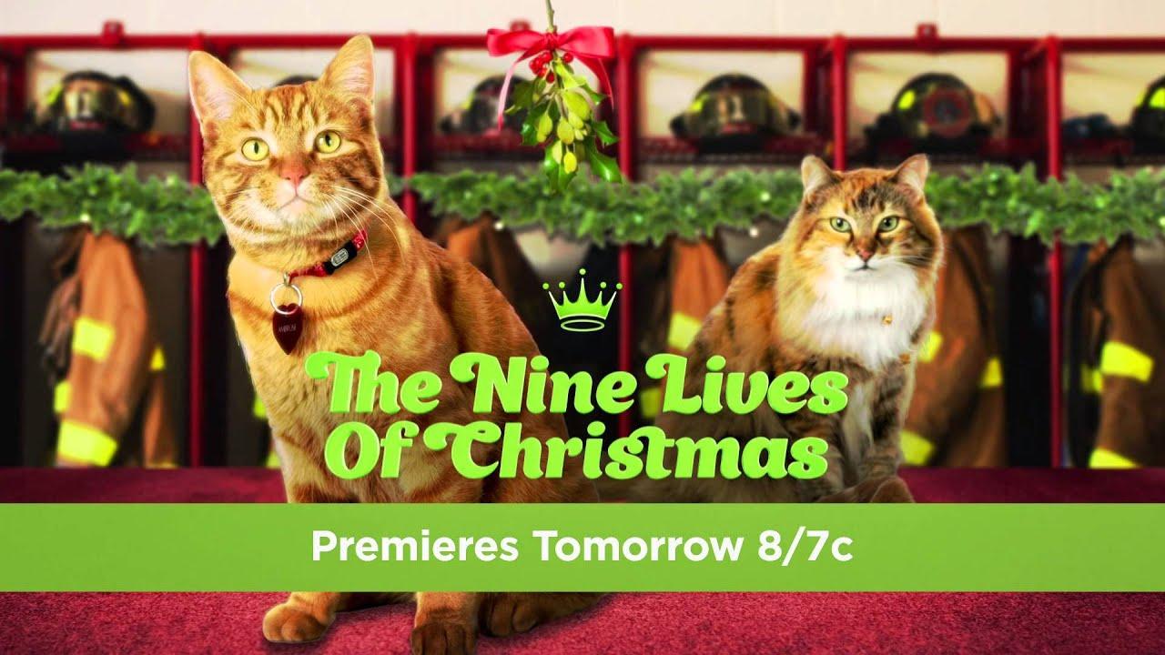 THE NINE LIVES OF CHRISTMAS 11/8 8/7C - YouTube