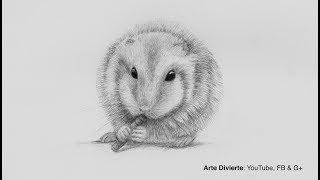 Cómo dibujar un hámster (conejillo de indias) - Narrado