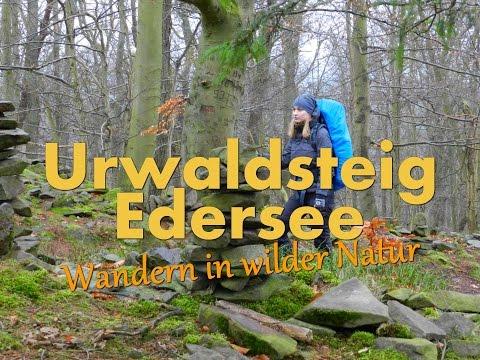 Urwaldsteig Edersee - Wandern in wilder Natur [HD] [Teil 2 von 3]