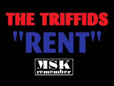 The Triffids Rent 1989 Island Records