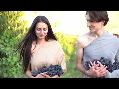 Hin ARENI Wine / Vineyards / Wine Factory