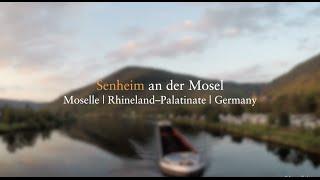 Senheim an der Mosel - hiking at the moselle river (Region Cochem, Moselsteig)