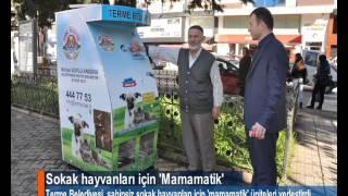 Sokak hayvanları  için 'Mamamatik'