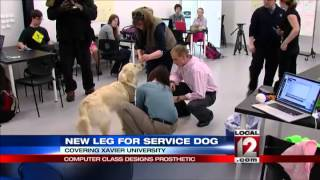 Computer Class Designs Prosthetic Leg For Service Dog