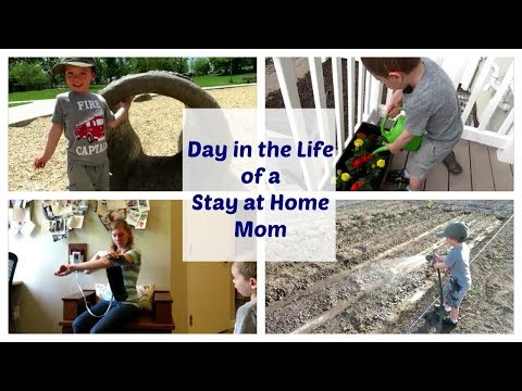DAY IN THE LIFE OF A STAY AT HOME MOM | MIDWIFE APPOINTMENT | TRADERS JOES SHOPPING