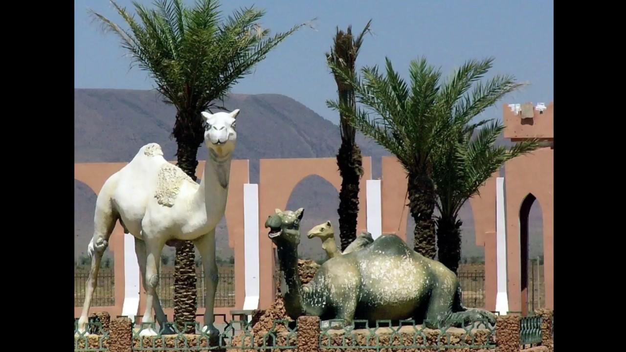 Download #SUDMAROC #guelmimouednoun #geoparcjbelbani Région Assa Zag une province de Guelmim Oued Noun -