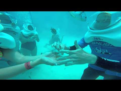 Sea trek Grand Cayman 2015