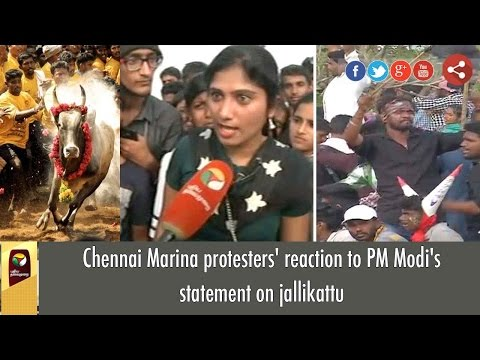 Chennai Marina protesters' reaction to PM Modi's statement on jallikattu