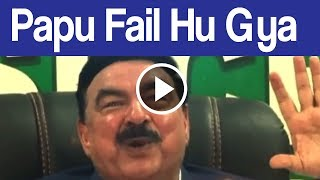 Papu Paancho kay Paacnh Mazmoon Mai Fail ( Sheikh Rashid )